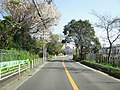 Kanagawa Route 111 -04.jpg