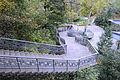 Kaniv Czernecza gora DSC 7629 71-103-0002.jpg