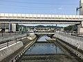 Kashiigawa River from Miyukibashi Bridge 2.jpg