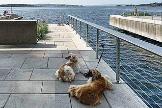 Public beach within the city Kavringen brygge, Oslo.jpg