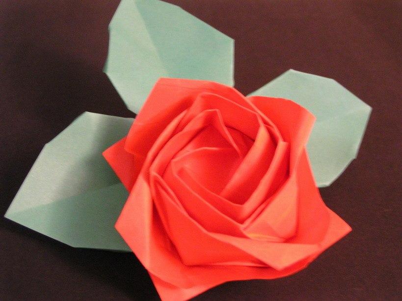 Kawasaki new rose