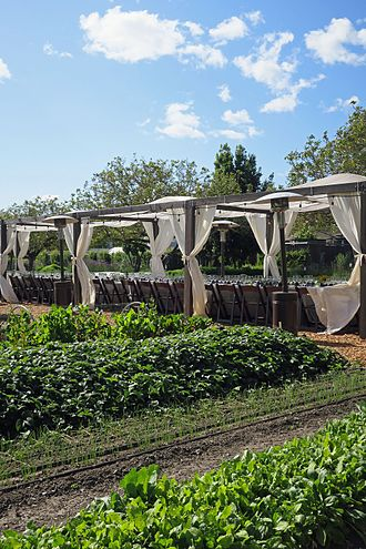 """Farm-to-table - A """"farm-to-table"""" dinner at Kendall-Jackson used produce from the winery's on-site garden."""