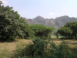 Kondaveedu Fort - Image: Kondavid 1