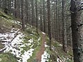 Kopanec na Ruženô - panoramio.jpg