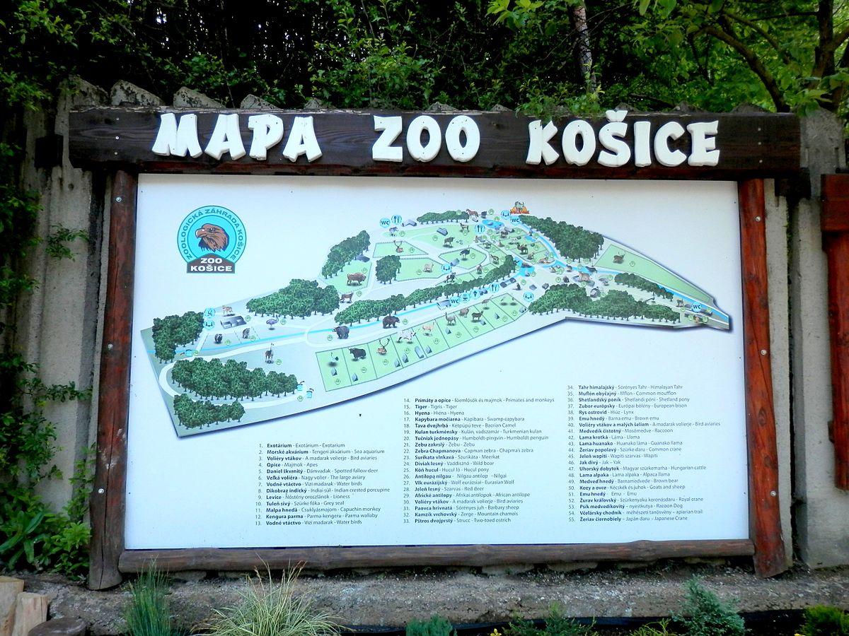 Ko ice zoo wikidata for Giardino wikiquote