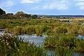 Kruger National Park Landscape 1.jpg