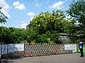 Kumamoto Castle, Kumamoto, Kumamoto (42277581861).jpg