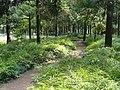 Kunming Botanical Garden - DSC02731.JPG