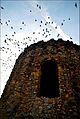 Kutub Minar2.jpg