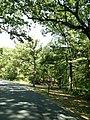 LHHV Field Trip to Gettysburg september 2016 - panoramio - Ron Shawley (36).jpg
