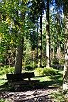 LSG Harz (LK Goslar) - Weg zum Auerhahnteich.jpg