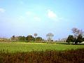 Landscape - panoramio (47).jpg