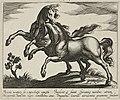 Landschap met twee galopperende paarden. NL-HlmNHA 1477 53011519.JPG