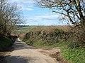 Lane to Trewalder - geograph.org.uk - 733644.jpg