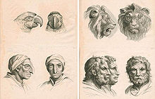 Попытка Шарля Лебрена кодифицировать визуальное выражение эмоций в живописи, была представлена в его небольшом иллюстрированном трактате «Methode pour apprendre a dessiner les passions» (Метод обучения отображения страсти в живописи). 1698 год.