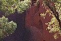 Leaves (14990379619).jpg