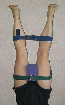 iyengar yoga  wikipedia