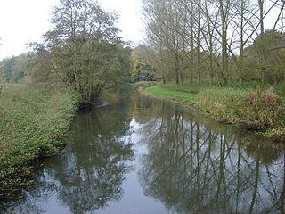 River Wensum SSSI