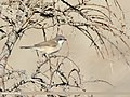 Lesser Whitethroat (Sylvia curruca) (46199124632).jpg