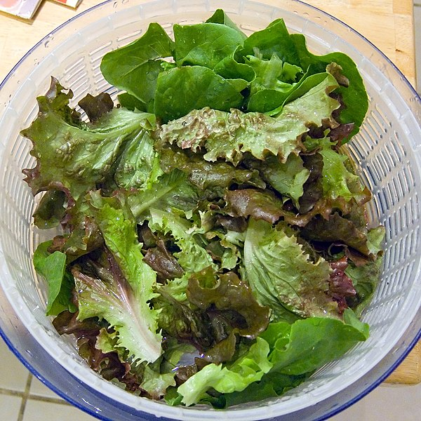File:Lettuce in salad spinner.jpg