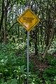 Liebiadziny reserve (Belarus) 05.jpg