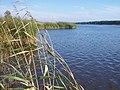 Lielupe river - panoramio - Paul Berzinn.jpg