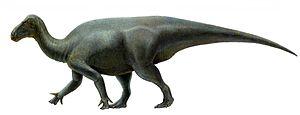 Ankylopollexia - Life Restoration of Iguanacolossus.
