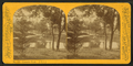 Lincoln Park, by P. B. Greene 4.png