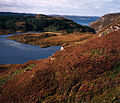 Loch Duartmore and Loch na Creige Ruaidhe beyond - geograph.org.uk - 709284.jpg