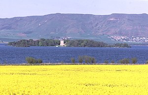 Loch Leven Castle - Looking across fields of oilseed rape to Loch Leven Castle