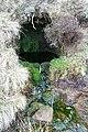 Loftshaw Well - geograph.org.uk - 360098.jpg