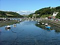 Looe river - geograph.org.uk - 58083.jpg