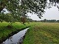 Loomster Kanaal in de Neegd von Seth bi Loomst 2.jpg