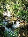Los Jardines de Mandor, Aguas Calientes, Peru (36168179413).jpg