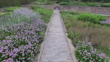 Lurie garden wikipedia for Lurie garden planting plan