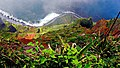 Madeira The Highest Clip Of Europe (35539552).jpeg