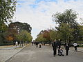 Madrid's public parks (6382400517).jpg