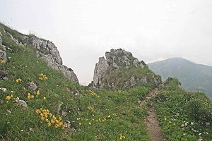 Malá Fatra National Park - The summit of Malý Kriváň (1,671 m) in the foreground