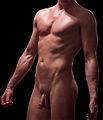 Male nude torso.jpg