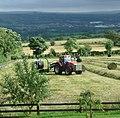 Malkin Tower Farm - panoramio.jpg