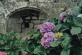 Manoir de Kernuz Pont-l'Abbé 04.jpg
