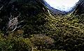 Marian Valley Fiordland National Park. (14501363356).jpg