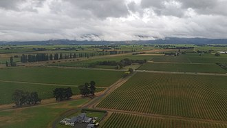 Marlborough Region - View looking north from Blenheim of Marlborough vineyards.
