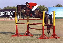 A dark brown horse ridden by a man in a red jacket and white pants, in mid-air over a jump