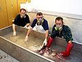 Masked men giant squid in tank.jpg
