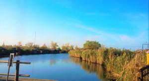 """Lake Massaciuccoli - view of the lake from """"Massaciuccoli Port"""", near Massarosa"""