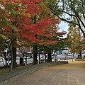 Matsuyamamachi, Nagasaki, Nagasaki Prefecture 852-8118, Japan - panoramio.jpg
