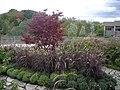 Meijer Gardens October 2014 50 (Volunteer Tribute Garden).jpg
