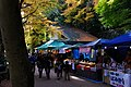 Meiji no Mori Minoh Quasi-National Park Minoh Osaka pref Japan13s3.jpg