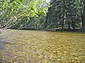 Merced River adjacent to Housekeeping Campground - panoramio.jpg